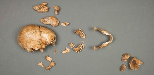 Bones of Jamestown