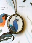 Nature Girl Locket 1 Peacock